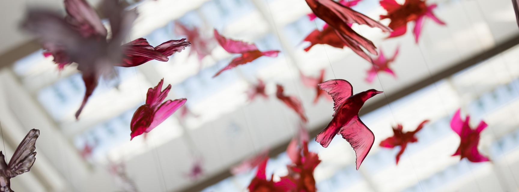 Department of Biochemistry Image Taken by Fisher Studios