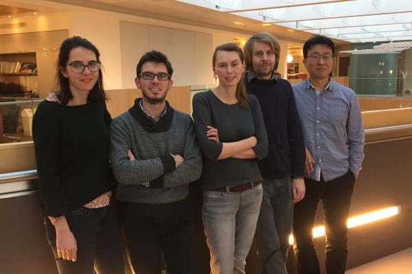 Vasilieva Lab members: Tea Kecman, Adrien Birot, Lidia Vasilieva, Krzysztof Kus and Dong-Hyuk Heo
