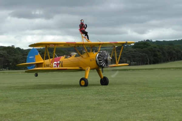 rita wingwalk